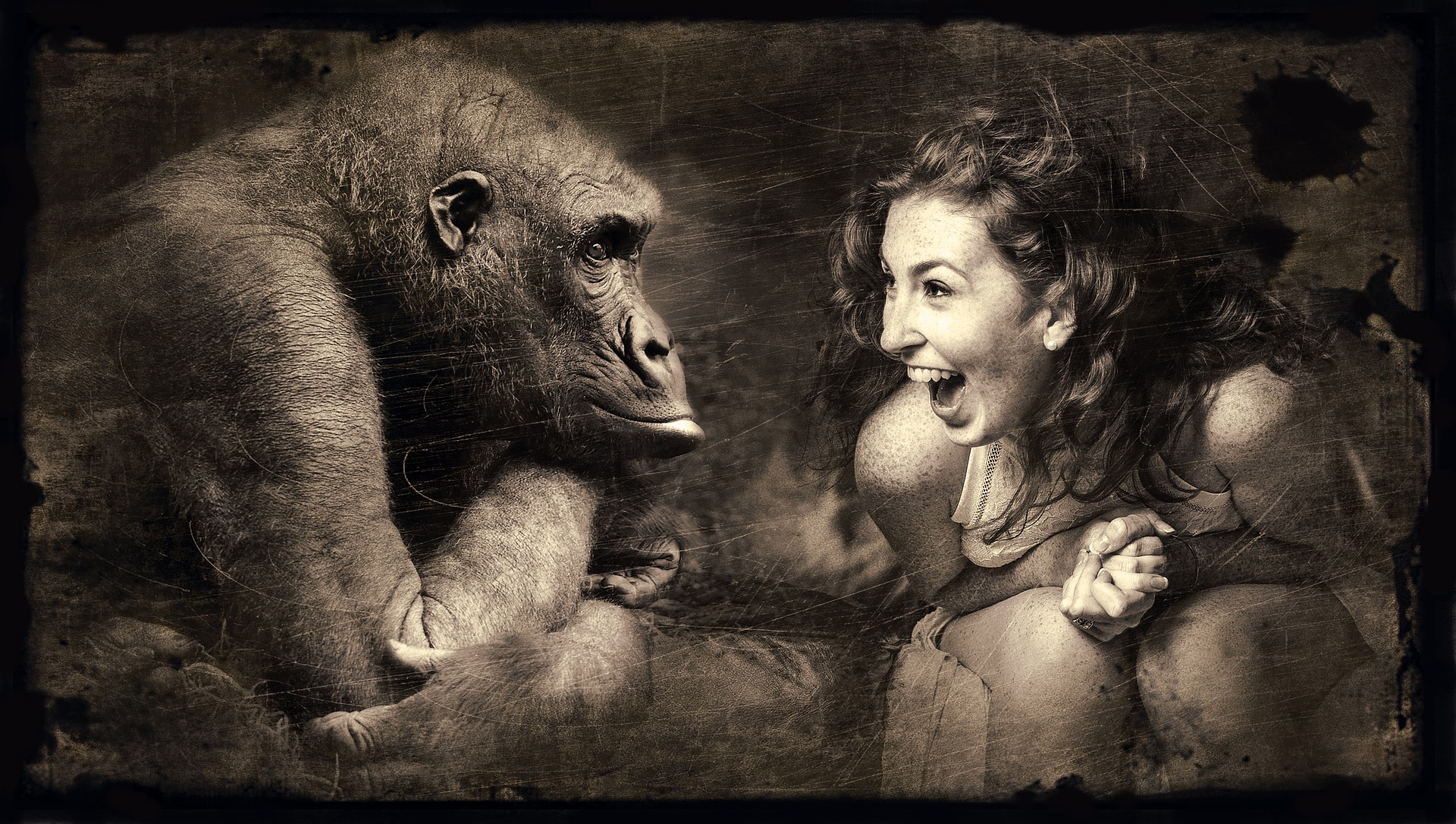 woman emoting to a gorilla