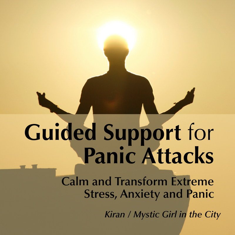 Guided Support for Panic Attacks