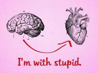 I'm with stupid.